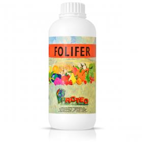 Folifer