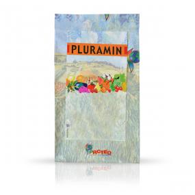 Pluramin