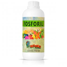 Fosforil