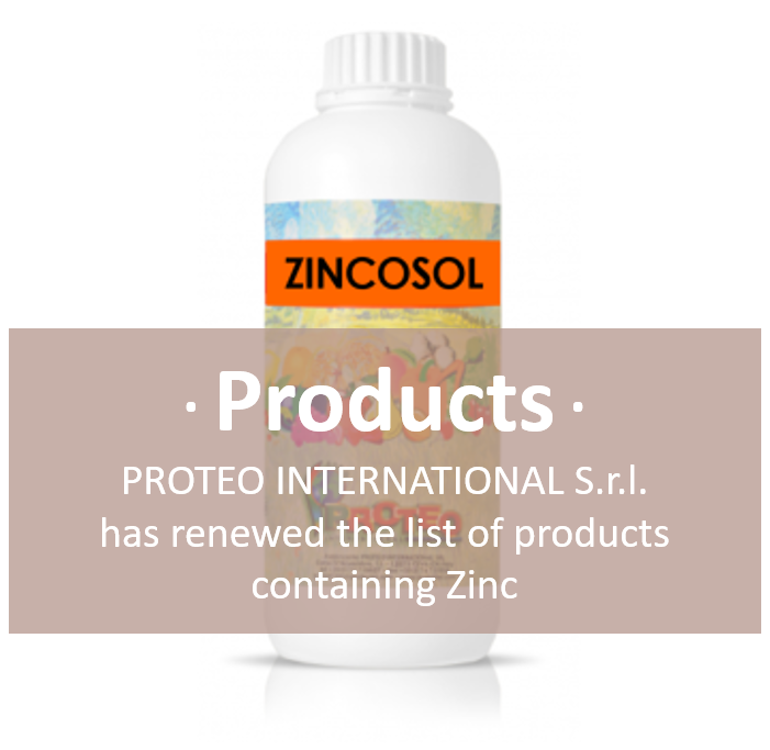 Zincosol - Copertina Eng.png